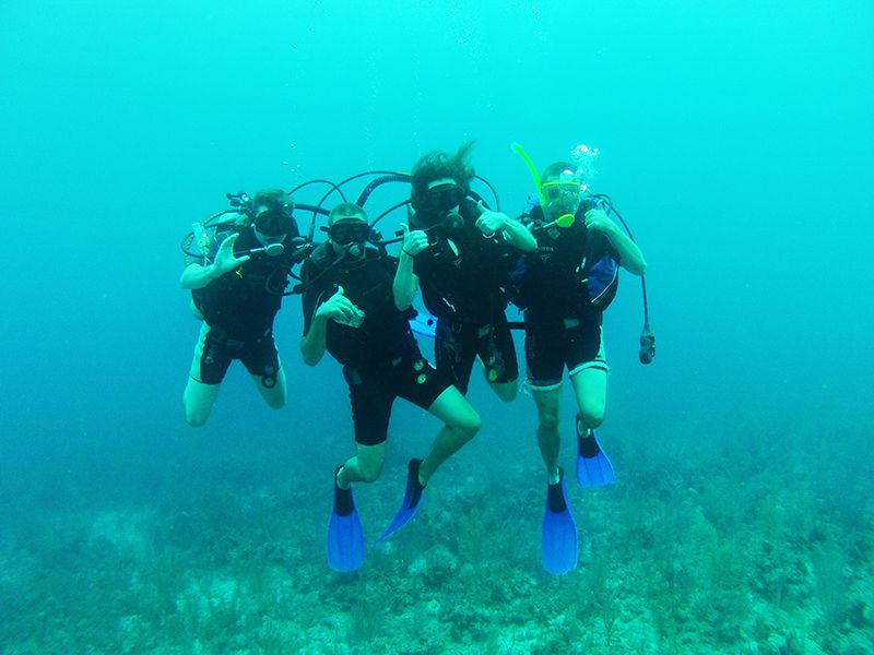 Four students are scuba diving.