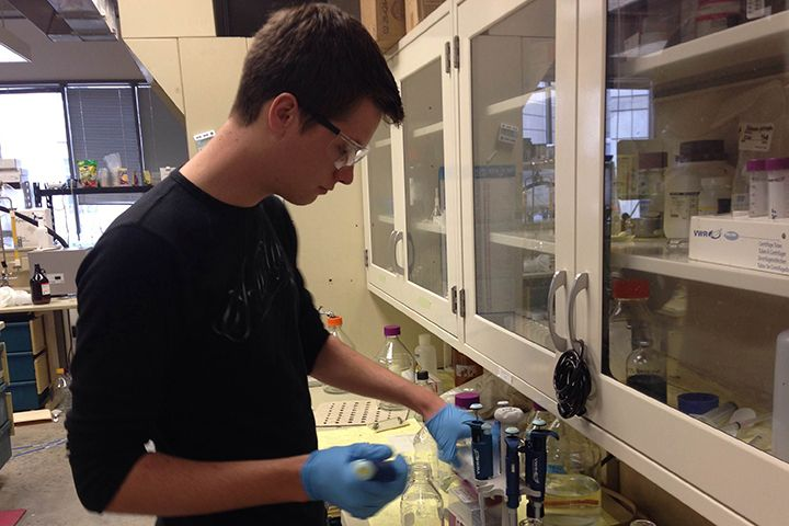 A young man is working in the lab.