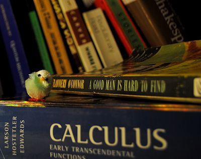toy chicken sits on pile of books