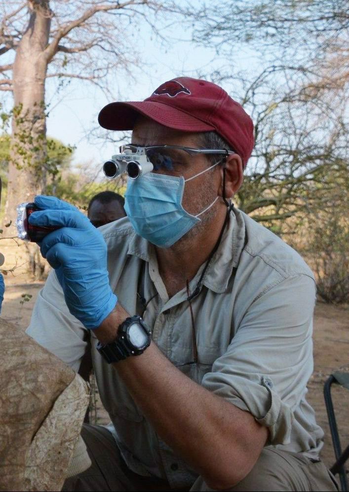 man in surgical mask holds flashlight in field